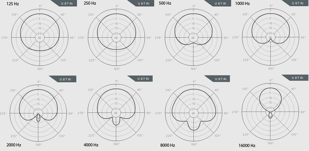 What Is The Difference Between Large And Small Diaphragm Microphones